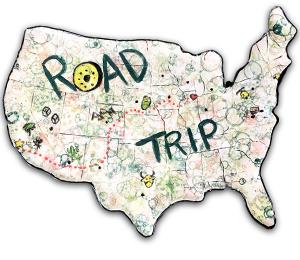 Walnut Creek Family Road Trip!